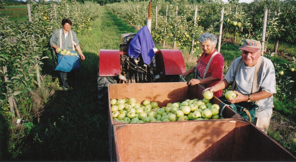 About Us – Meleg's Orchard